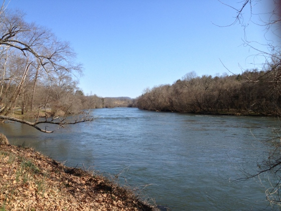 French Broad River March 2013