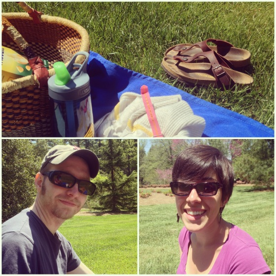 Picnic and Biltmore