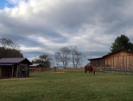 Pretty pastures.