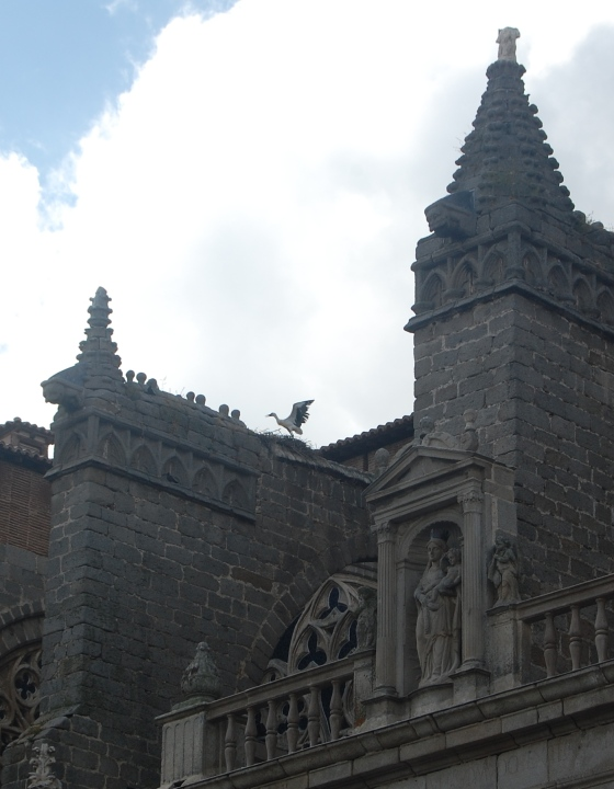 Stork Nesting on a Gothic Cathedral