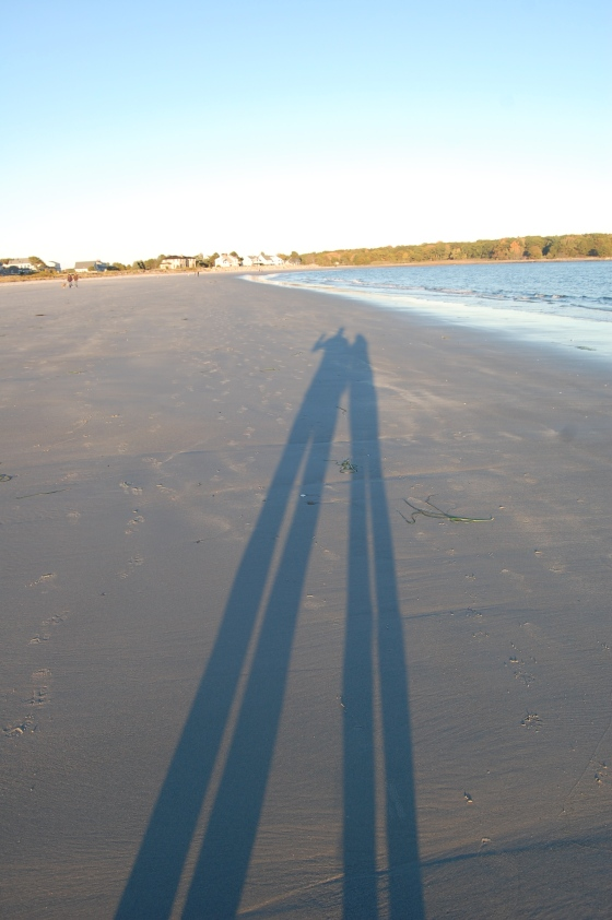 Long shadows